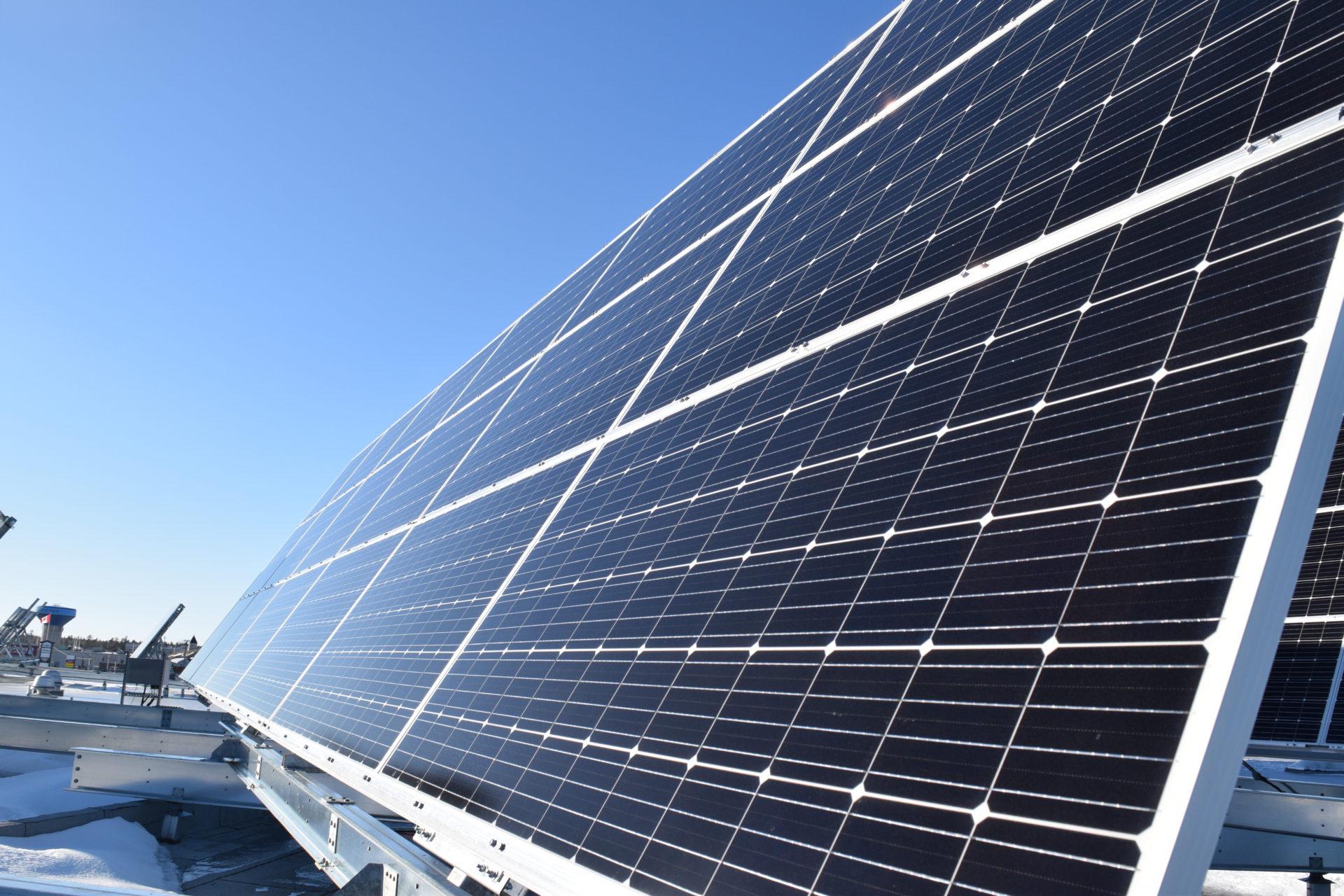 Le chef du Parti vert présente un projet de loi visant à rendre l'économie plus verte  grâce aux énergies renouvelables