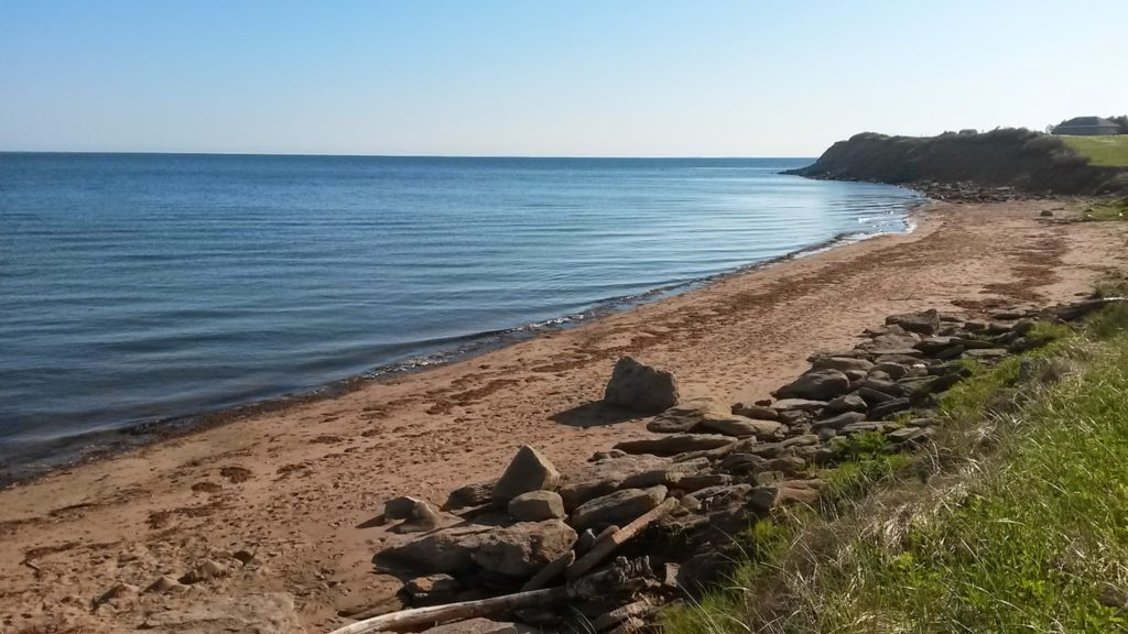 Petition: Privatization of Murray Beach